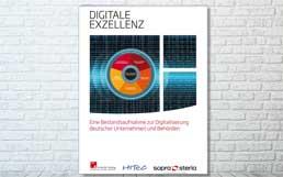 SopraSteriaConsulting_DigitaleExzellenz_258
