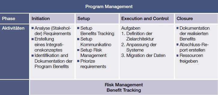 Phasen des Program Management NTT DATA