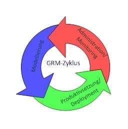 Abbildung 5: Managementzyklus GRM
