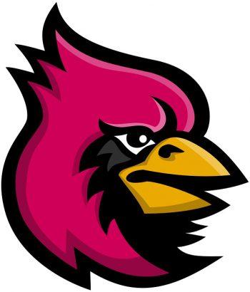 Namensgeber: Die roten Cardinal (Cardinalidae) sind eine Vogelfamilie.<q>patrimonio/bigstock.com</q>