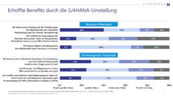 Was sich IT-Verantwortliche aus dem Umstieg auf S/4 HANA versprechen. <q>Lünendonk
