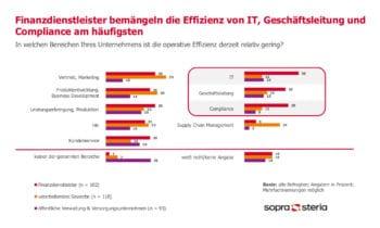 Wo finden sich die Problemfelder der Effizienz? <q>Sopra Steria