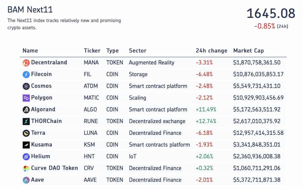 Die elf Kryptowerte des Next-Eleven-Index' von Bloxxom Asset Management. <Q>(BAM)
