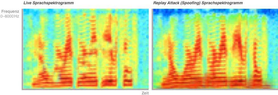 Exemplarische Darstellung eines Sprachspektrogramms in zwei Varianten: Gegenüberstellung einer Live-Aussage und deren Tonaufnahme – die Unterschiede im niedrigen und hohen Frequenzbereich sind gut ersichtlich.<q>Triplesense Reply</q>